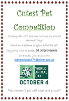 Grove Academy Cutest Pet Competition Results